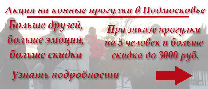 При заказе конной прогулки в Подмосковье от 5 человек действует скидка до 3000 руб.