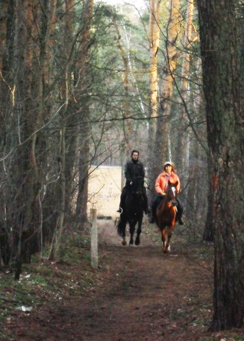Романтическая конная прогулка для двоих